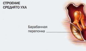 a vállízület ízületének ajak törésének kezelése)