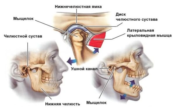 Болит нижнечелюстной сустав что делать. Причины болей в челюстном суставе
